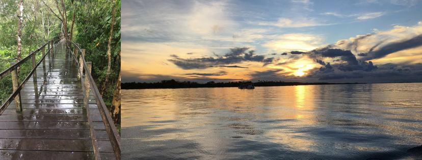 Coucher de soleil sur le Rio Negro