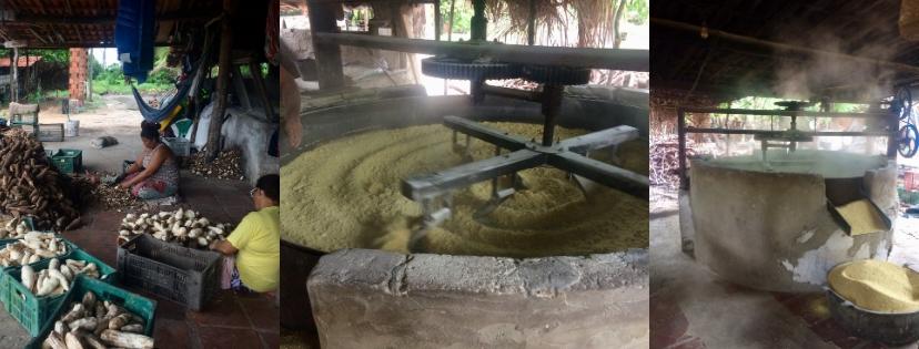 Usine de manioc